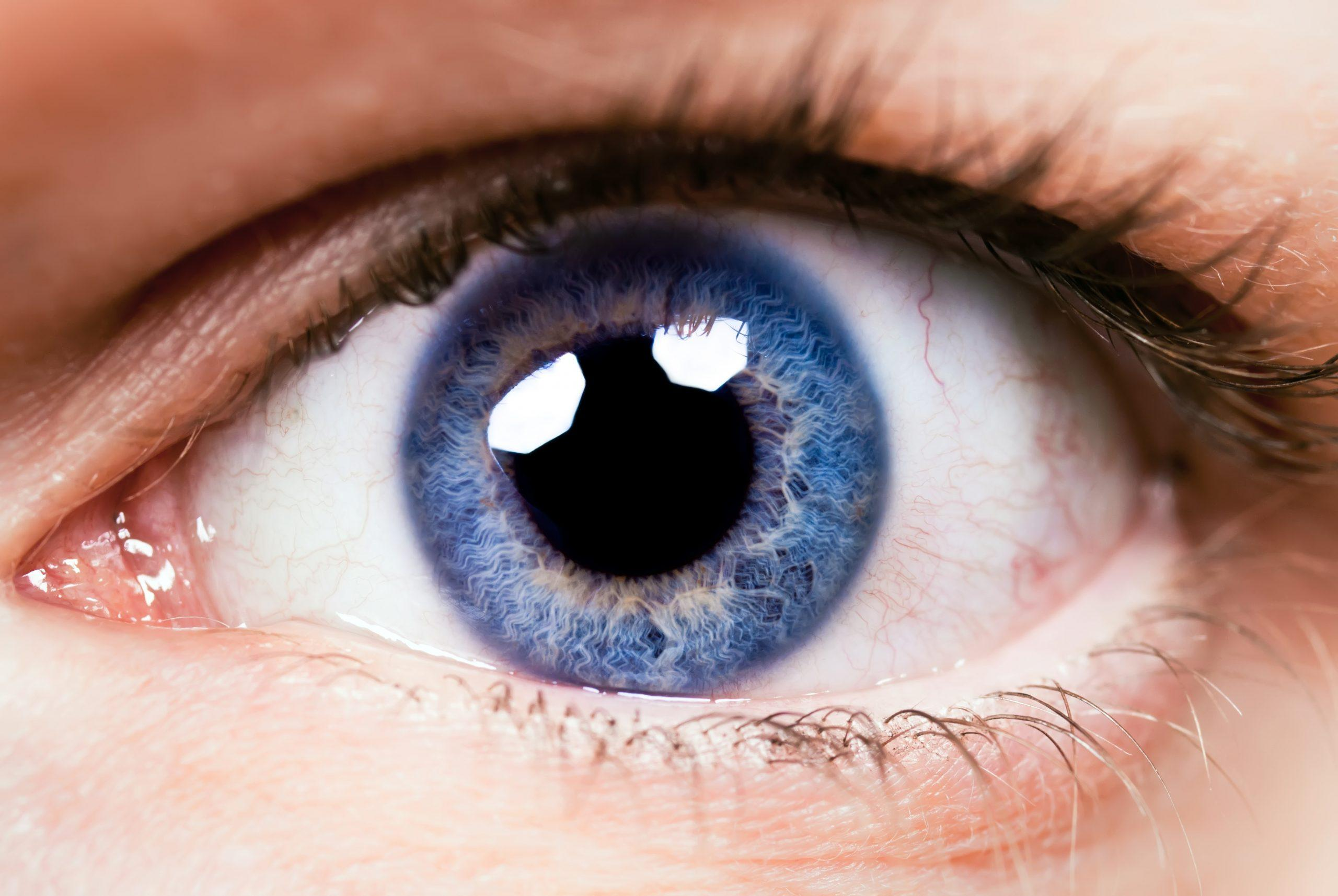 Nahaufnahme eines Auges mit blauer Augenfarbe